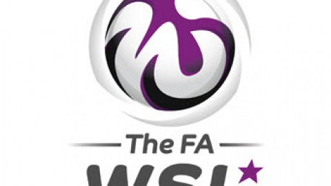 FA Womens Super League Cup Results 6th July 2014