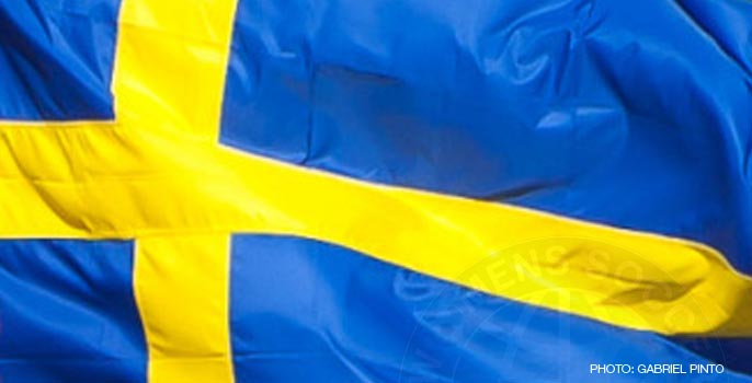 Sweden Women's National Team flag