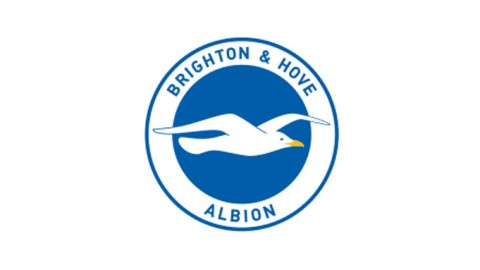 Brighton complete signing of Norwegian stopper