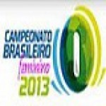 Group logo of Brazil Women's Soccer Championship 2013